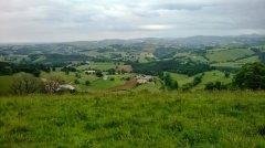 Landscape Chalosse